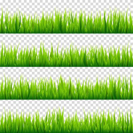 투명 한 배경에 고립 된 잔디를 설정합니다. 녹색 초원입니다. 자연 배경입니다. 봄, 여름 시간입니다.