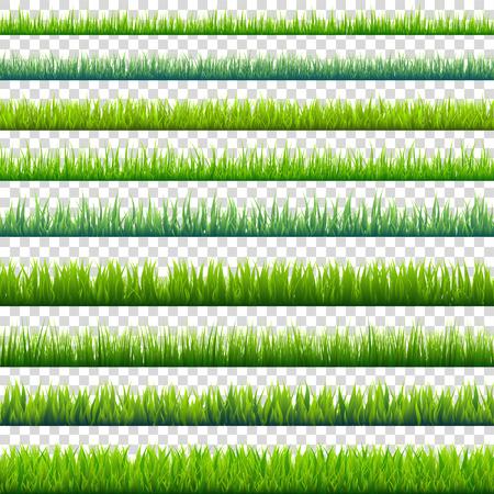 Gras geïsoleerd op transparante achtergrond set. Groene weide. Natuur achtergrond. Lente, zomertijd.