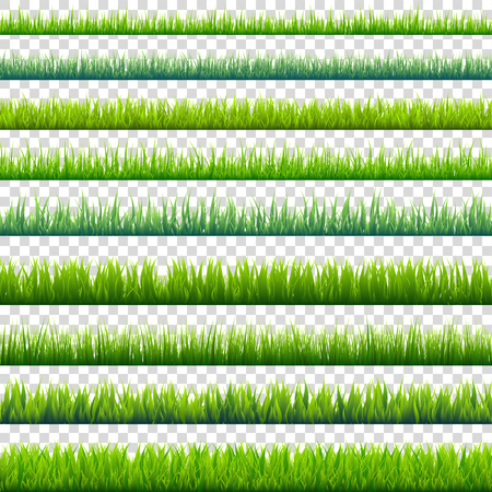 Grass isolated on transparent background set. Green meadow. Nature background. Spring, summer time. 版權商用圖片 - 83128386