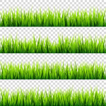 草は透明な背景セットに分離されました。緑の草原。自然の背景。春、夏の時間。