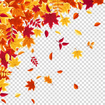 Autumn falling leaves. Nature background with red, orange, yellow foliage. Flying leaf. Season sale. Vector illustration. Çizim