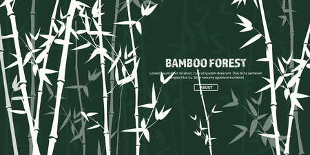 Bamboo forest set. Nature. Japan., China. Plant. Green tree with leaves. Rainforest in Asia. 写真素材 - 115591124