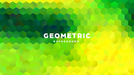 Hexagonal polygonal abstract background. Colorful triangle gradient design. Low poly hexagon shape banner. Vector illustration. Standard-Bild - 121501991
