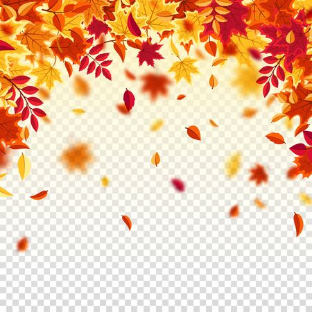 Autumn falling leaves. Nature background with red, orange, yellow foliage. Flying leaf. Season sale. Vector illustration. Illustration