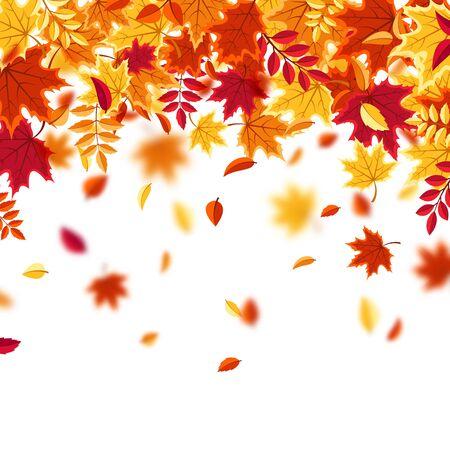 Autumn falling leaves. Nature background with red, orange, yellow foliage. Flying leaf. Season sale. Vector illustration. Illustration