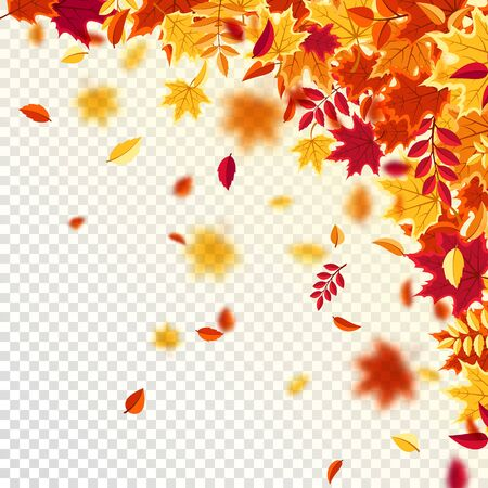 Autumn falling leaves. Nature background with red, orange, yellow foliage. Flying leaf. Season sale. Vector illustration. 일러스트