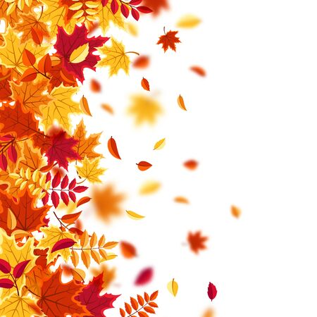 Autumn falling leaves. Nature background with red, orange, yellow foliage. Flying leaf. Season sale. Vector illustration