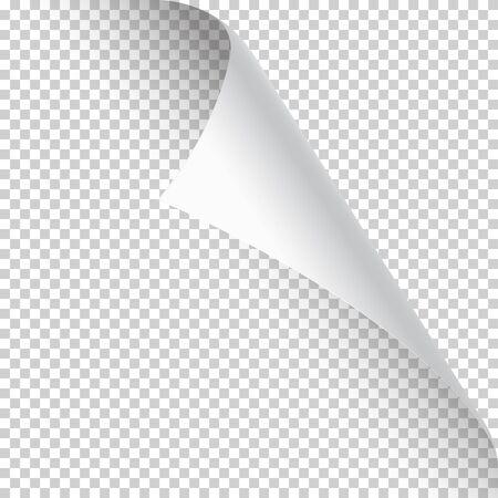 Gewellte Seitenecke mit Schatten auf transparentem