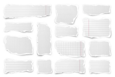 Ripped paper strips. Realistic crumpled paper scraps with torn edges. Lined shreds of notebook pages. Vector illustration. Illustration