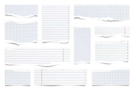 Ripped paper strips isolated on white background. Realistic lined paper scraps with torn edges. Sticky notes, shreds of notebook pages. Vector illustration. Stock Illustratie