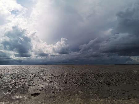 Swampy and stormy landscape Reklamní fotografie