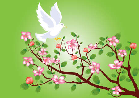 greenness: Pigeon flying to a flowering cherry branch  Illustration