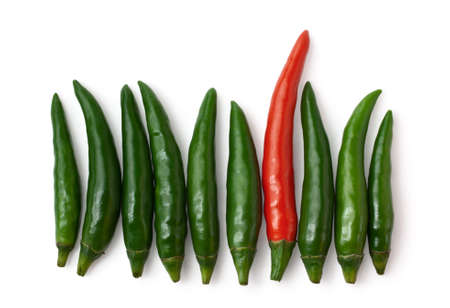 Spicy green and one red chillies isolated on white background