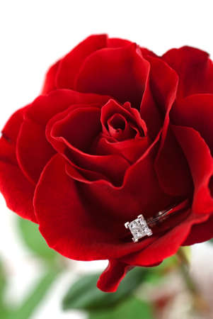 Modern diamond engagement ring embedded in red rose petals Stock Photo - 6653752
