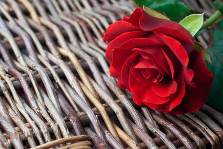 Red rose on wicker background (copy space, shallow depth of field) Stock Photo