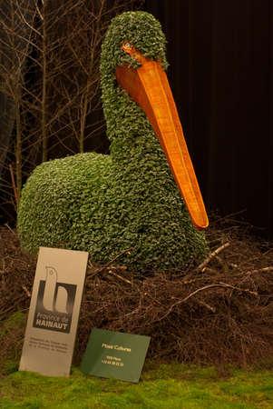 Ghent, Belgium - April 23, 2010: The Ghent Floralies (de Gentse Floralien ) 34th edition of prestigious flower and plant exhibitions on April 17-25, 2010 in Ghent (Gent), Belgium. Pelican (Dichondra plant)