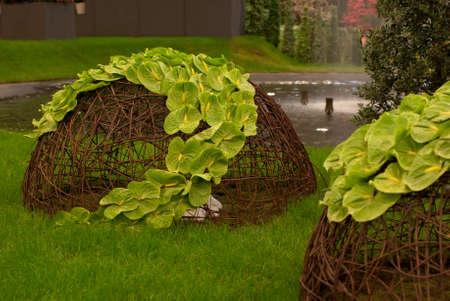 Ghent, Belgium - April 23, 2010: The Ghent Floralies (de Gentse Floralien ) 34th edition of prestigious flower and plant exhibitions on April 17-25, 2010 in Ghent (Gent), Belgium. Green anthurium.