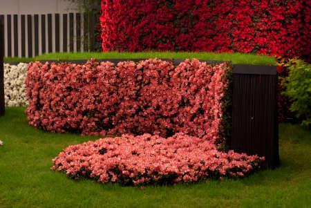 Ghent, Belgium - April 23, 2010: The Ghent Floralies (de Gentse Floralien ) 34th edition of prestigious flower and plant exhibitions on April 17-25, 2010 in Ghent (Gent), Belgium. Azalea