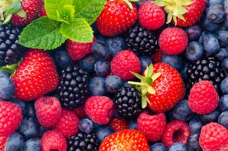 Wild berries (strawberries, blueberries, blackberries, raspberries) - Closeup photo