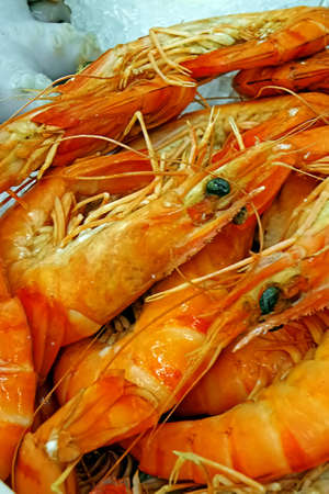 fishy: Fresh lobster exposed to sale on ice  Stock Photo