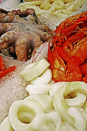 Octopus,rings over and lobster exposed to sale on ice  photo