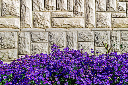 Decorative wall with flowers at the bottom. photo