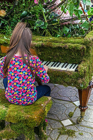 octave: Little girl singing at one piano decorated with flowers and moss grass. Stock Photo