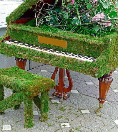 Old piano decorated with flowers and moss grass.