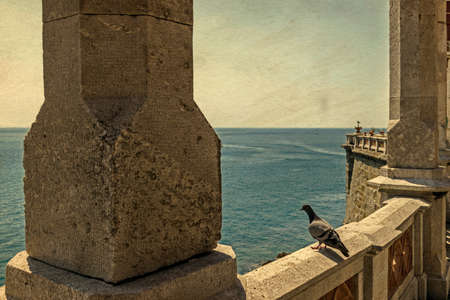 ramparts: Old postcards with a dove which see the sea from castle ramparts. Miramar, Italy.Vintage processing.