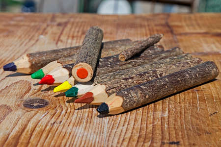 Colored pencils made from branches of trees and placed on a wooden table. Stock Photo
