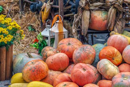 Autumn arrangement with pumpkins, corn and lamps. Фото со стока
