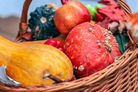 Autumn arrangement with pumpkins in basket. Фото со стока