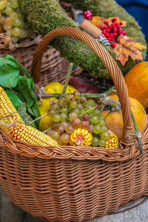 Autumn arrangement with pumpkins and grapes in basket. Фото со стока