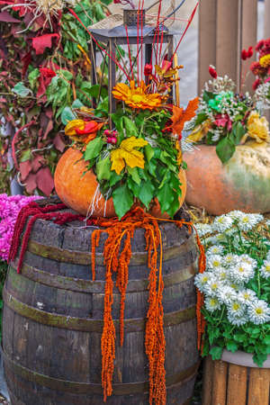 Autumn arrangement with pumpkins, barrel, lamp and flowers. Фото со стока