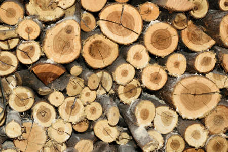 lumbering: Pile of fire wood background texture Stock Photo
