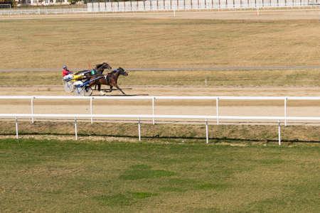 Ploiesti, Romania - October 07, 2018: A trotting horse race held on Ploiesti Hippodrome in Prahova, Romania.