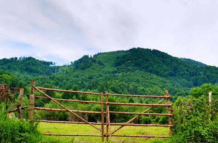 rustic wood log branch gate and green forest on hill in the background