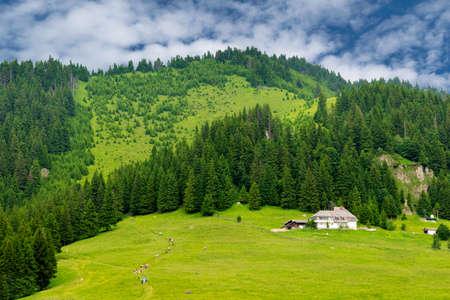 Scenic view of Muntele Rosu (Red Mountain) area, in Cheia - Prahova county, Romania, Ciucas Mountain part of Carpathians Mountains