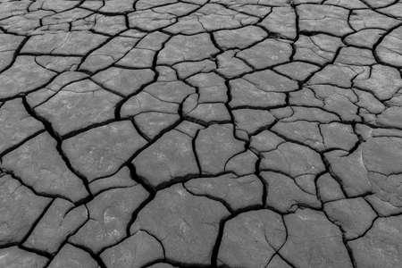 close-up detail of cracked soil mud pattern