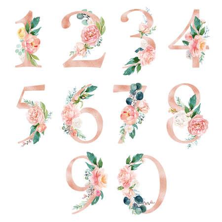Crema de melocotón / Rubor Conjunto de números florales: dígitos 1, 2, 3, 4, 5, 6, 7, 8, 9, con composición de ramo de flores. Colección única para la decoración de invitaciones de boda y otras ideas conceptuales. Foto de archivo