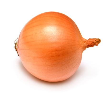 cebolla: Bulbo fresco de la cebolla aislado en un fondo blanco