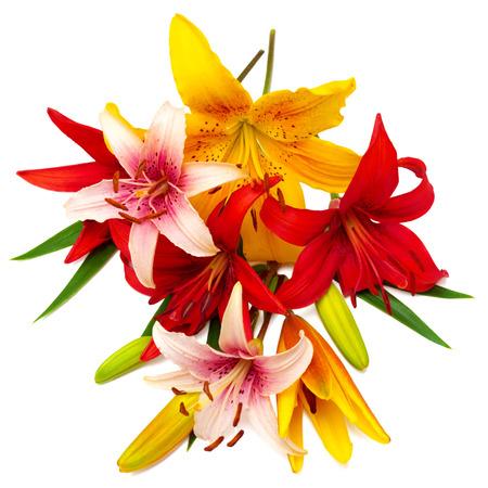 and bouquet: Bouquet di fiori bellissimi gigli. I colori cartoline dalle sue vacanze.