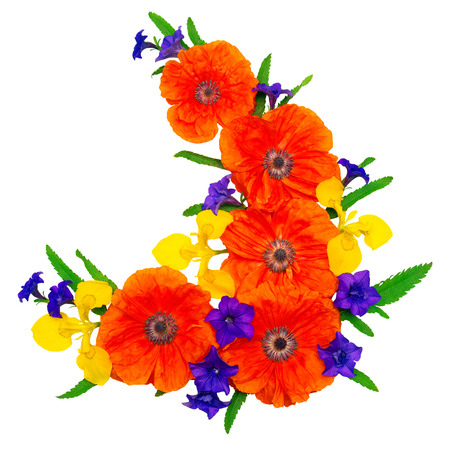 Flowers red poppies, yellow iris and purple petunias isolated on white background. Flowers card