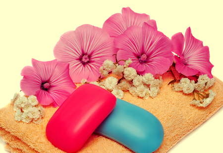 yarrow: Soap, flower and towel isolated on white background. Retro filter. Vintage. Flat, top view Stock Photo