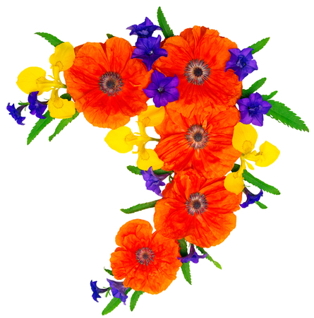 Flowers red poppies, yellow iris and purple petunias isolated on white background. Flat lay, top view