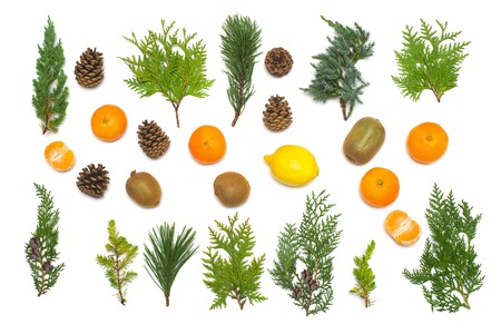 Creative festive card from tropical fruits of lemon, kiwi, mandarin, orange, christmas ball and pine cones with coniferous plants. Branches of junipers, pines, thuja. Glitter. New Year, 2018. Flat lay, top view