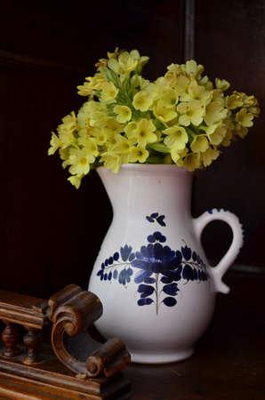 primroses: Primroses in vase