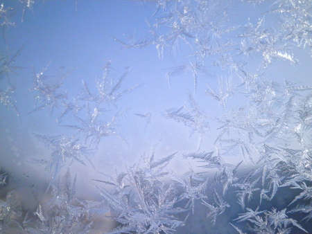 frosted window: frosted window