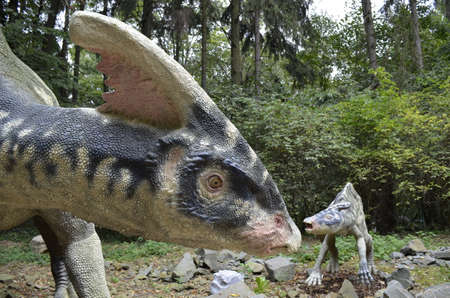 prehistoric animals: Parasaurolophus