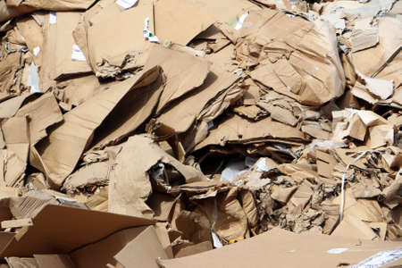 landfill site: Cardboard in landfill waiting to be packed for transport to recycle center